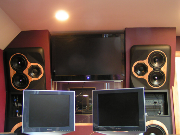 Clarity Custom Monitors -Monitors 1